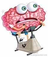 esercizio fisico aerobico e cervello